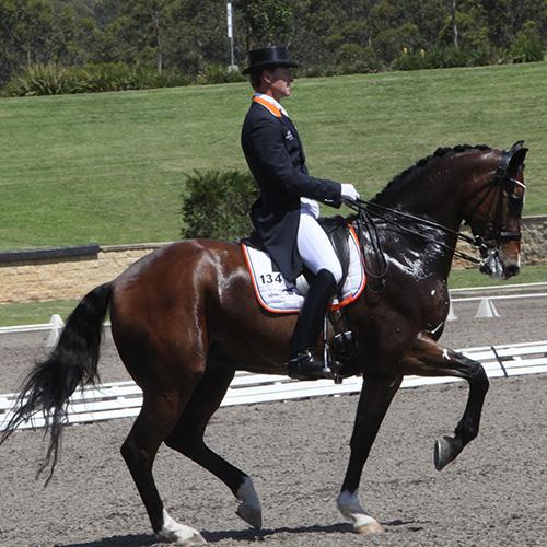 Brett Parbery of Brett Parbery Performance Horses