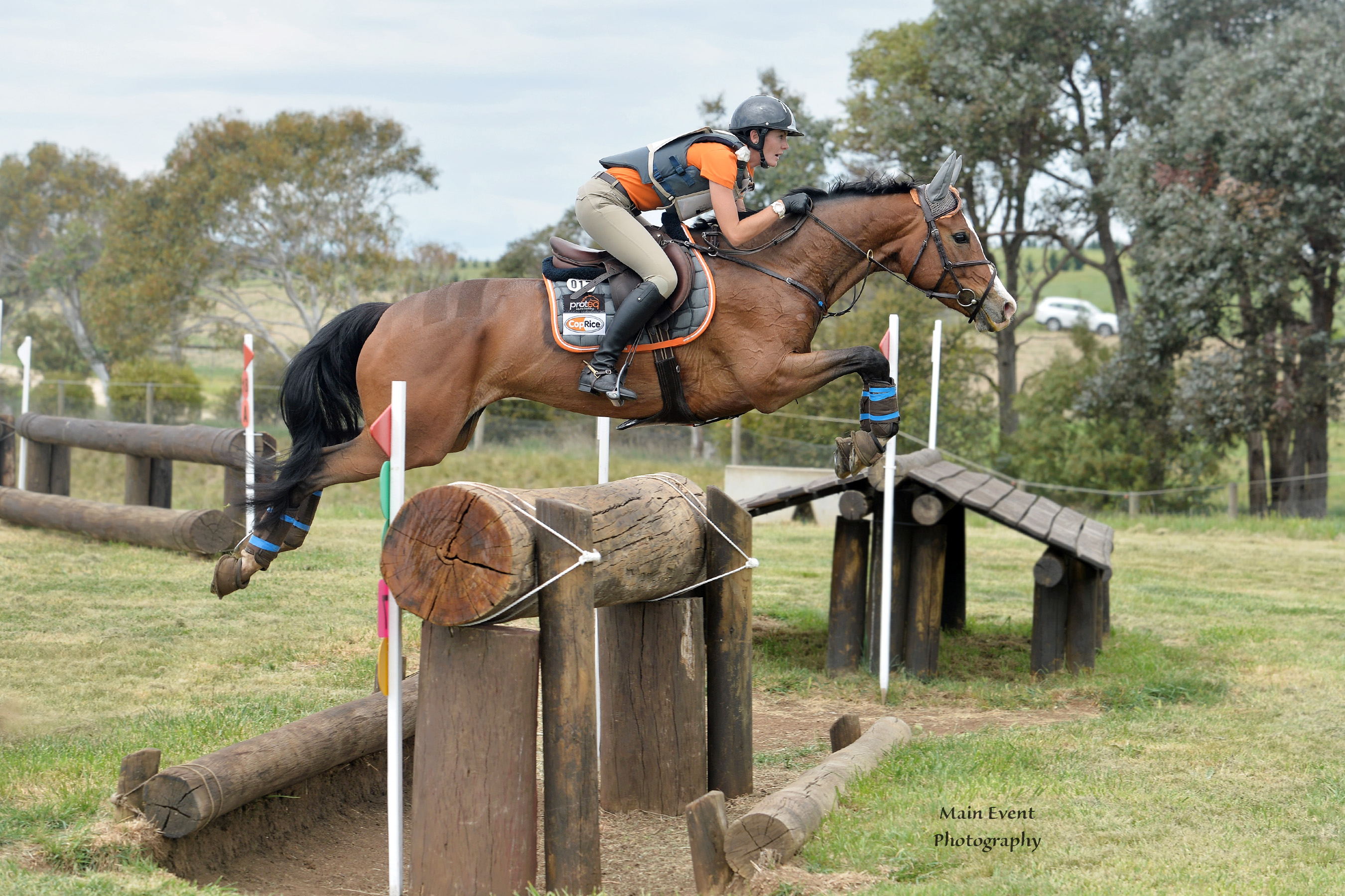 Mattea Davidson – Davidson Equestrian